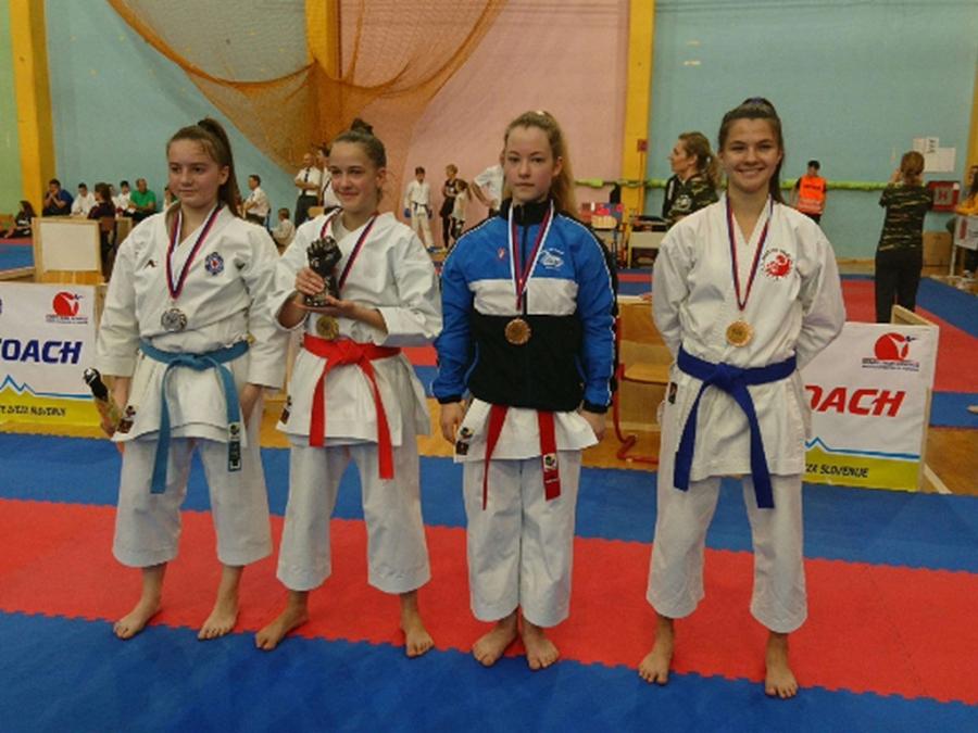 Uspešna karateista