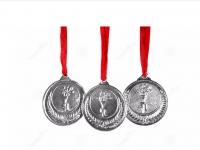 Uspehi naših učencev na državnih tekmovanjih