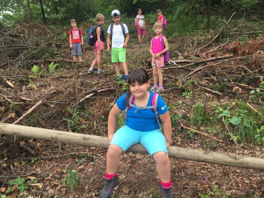 Izlet najmlajših planincev